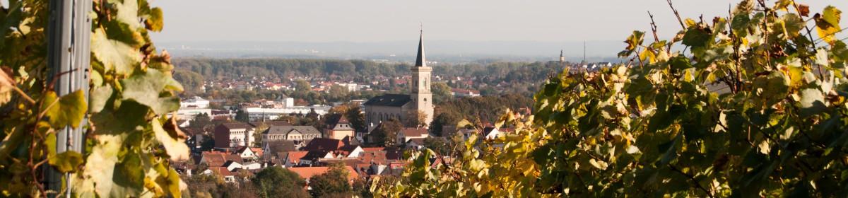 St.Albanshof Bodenheim